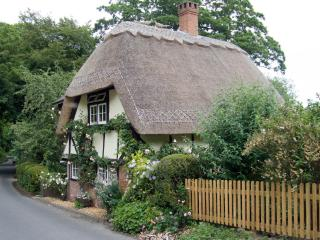 Wherwell cottage by Flickr user Charles D P Miller