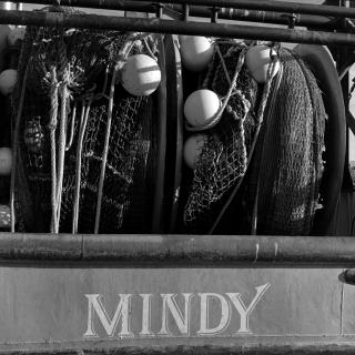 Mindy by Flickr user misteraitch