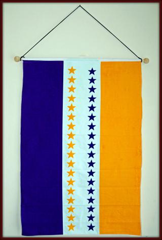 Women's Party Flag (Suffragist Movement) by Flickr user Tony Fischer Photography